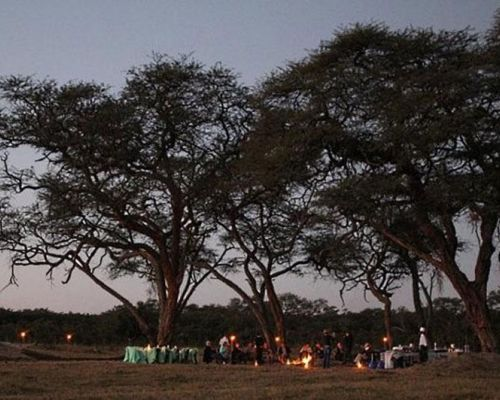 event idea gala dinner in the bush
